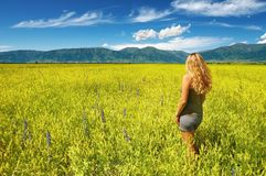Girl In Blooming Field Stock Photos