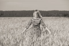 Girl In The Wheat Field Royalty Free Stock Photo