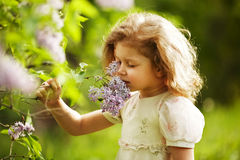 Girl inhales the aroma of lilacs Stock Images