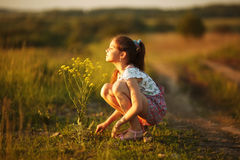 Girl inhales aroma of a wildflower Royalty Free Stock Photos