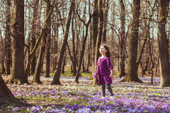 Girl inspired by nature. Little girl enjoy the sun, she is dreaming and flying, inspired by blossom meadow of saffrons Stock Photo