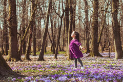 Girl inspired by nature. Little girl enjoy the sun, she is dreaming and flying, inspired by blossom meadow of saffrons Royalty Free Stock Image