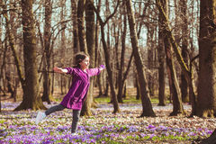 Girl inspired by nature. Little girl enjoy the sun, she is dreaming and flying, inspired by blossom meadow of saffrons Royalty Free Stock Photos