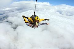 Tandem jump. Skydiving in the blue sky. royalty free stock photography
