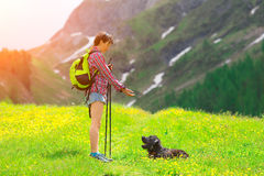 Girl instructs his dog. In the meadow in the mountains Stock Photography