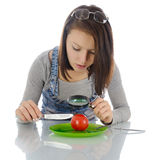 Girl investigating tomato. Stock Photos