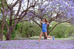 Girl and Jacaranda Tree Stock Photos