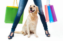 Shopping with dog Royalty Free Stock Images