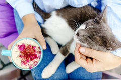 Girl in jeans jacket holding a cup of cappuccino with a cute cat Royalty Free Stock Photography