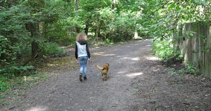 Girl in jeans walking with dog on leash