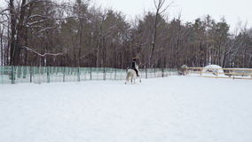 Girl jockey on a horse moves in the paddock. She motion gallop. Cloudy quiet winter day. A little snow falls. Slow motion footage stock video