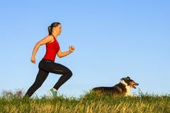 Girl jogging with a dog Royalty Free Stock Images