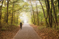 Girl jogging in forest Stock Photos