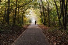 Girl jogging in forest Stock Image