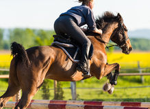 Girl jumping with horse Stock Image