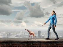 Girl with kangaroo. Young woman in casual holding giraffe on lead Stock Image