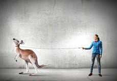 Girl with kangaroo Stock Photo