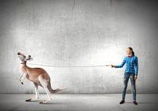 Girl with kangaroo. Young woman in casual holding kangaroo on lead Stock Photo
