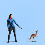 Girl with kangaroo. Young woman in casual holding kangaroo on lead Stock Photography