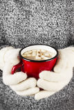 Girl keeps a mug of hot cocoa with marshmallows in mittens Royalty Free Stock Photos
