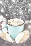 Girl keeps a mug of hot cocoa with marshmallows in mittens. Toni Stock Image
