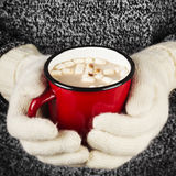Girl keeps a mug of hot cocoa with marshmallows in mittens. Toni Royalty Free Stock Photos