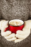 Girl keeps a mug of hot cocoa with marshmallows in mittens. Toni Stock Photos