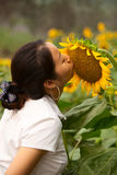 The girl kiss Sunflower. The girl kiss yellow sunflower Royalty Free Stock Photography
