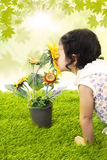 Girl kiss sunflower in spring Stock Photos