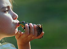 Girl kissing frog Stock Images