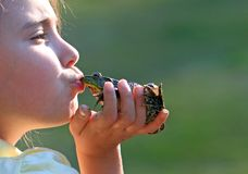 Girl Kissing Frog Stock Photo