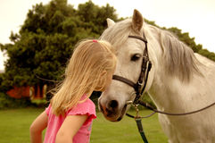 Girl kissing pony. A rear view of a little caucasian white girl child with long blond her kissing the nose of her white little pony on the paddock of a farm Stock Photos