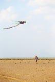 Girl with kite Stock Photos