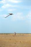 Girl with kite Stock Photo