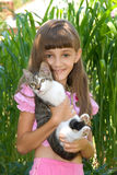 The girl with a kitten Stock Photo