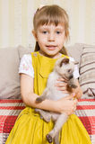 Girl with a kitten Stock Photo