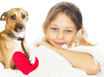 Girl and kitten and  dog Stock Photo