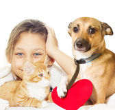 Girl and kitten and dog Royalty Free Stock Photos