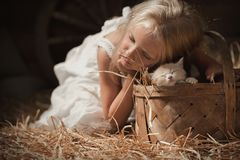 Girl with a kitten on hay. Little girl puts a kitten sleeping in a basket on hay in the barn Stock Images
