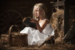 Girl with a kitten on hay Royalty Free Stock Photos