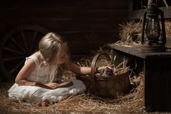 Girl with a kitten on hay Royalty Free Stock Photo