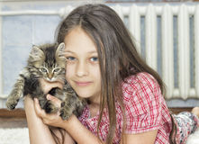 Girl and kitten Stock Image