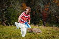 Girl and kittens Royalty Free Stock Photography