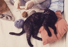 Girl knits and black cat lies on pillow. The girl knits and black cat lies on pillow Stock Photo
