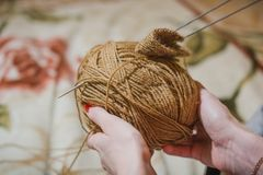 The girl knits spokes. The girl knits a sweater spokes from the shestyankh of threads. A ball of woolen threads and a spoke for knitting Royalty Free Stock Photos