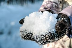 Girl in knitted wool mittens. Holding snow in her hands Royalty Free Stock Photos