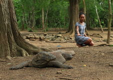 Girl with komodo dragon. Tourist girl - young Papuan woman with komodo dragon lying on ground in forest on Komodo island - Komodo National Park, Nusa Tengara stock images