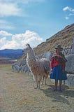 Girl with lama Royalty Free Stock Photos