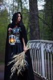 Girl with a lantern on the bridge Stock Photos