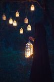 Girl with a lantern at night in the forest Stock Images